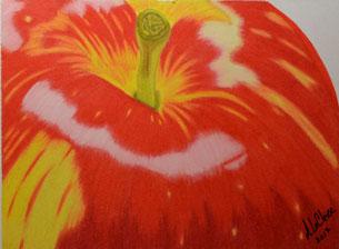 Dessin crayons de couleur gros plan pomme rouge et jaune.
