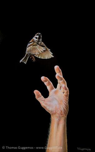 im fluge, schwalbe jagt, Flugzeug, rauch, kaputt, Acryl, acrylmalerei, gemälde, kunst, Guggemos Thomas