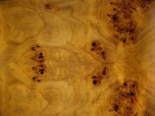 Echtholzfurnier Pappel Maser
