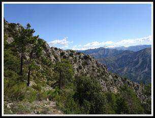 Le mont Vial (Revest-les-Roches)