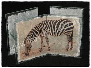 Zebrafoto auf Teelichthalter als Fotogeschenk