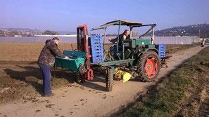 Der 'Schlepper' (Traktor) wird geprüft.....