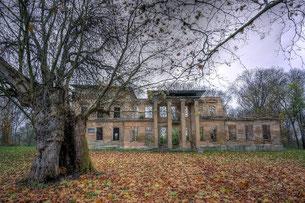 Castle D.