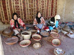 Womens Argan Oil Co-operative