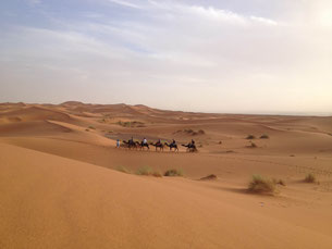 Camel ride to the Camp in Erg Chebbi