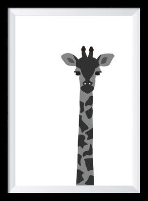 Schwarz-weiß Illustration - Giraffe