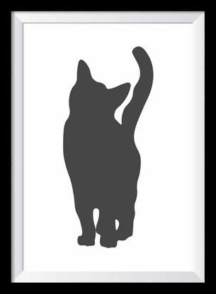 Katze - Illustration - schwarz-weiß