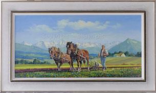 Bauer mit Pferdepflug und den Berner Alpen