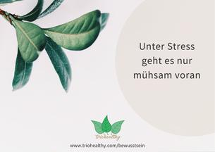 Unter Stress geht es nur mühsam voran