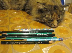 鉛筆を無視するターニャちゃん