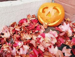 Freitagslieblinge, Kraftquelle, Auszeit im Paradies, Herbstbeginn, Halloween in Hessen, Kürbisgesicht, Wochenglück, Herbstmagie