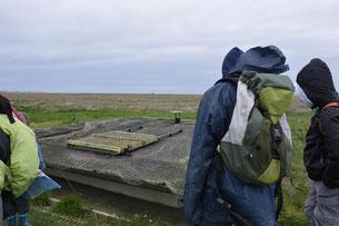 traversée de la baie de Somme