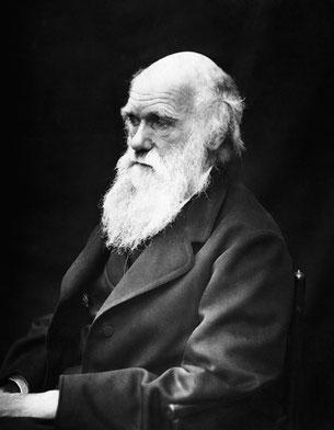 Der britische Naturforscher Charles Robert Darwin (1809-1882) wurde vor allem durch eine Evolutionstheorie bekannt und hat die Wissenschaft bis zum heutigen Tag geprägt.