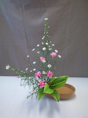 2011.3.28 直立型  by Maoさん