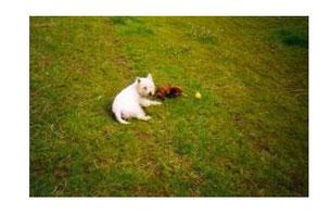 Ziehmama Schiela und klein Lissy