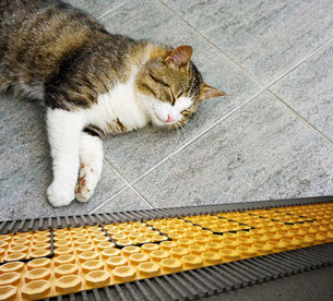 Cat sleeping on a tile floor with radiant heating underneath.
