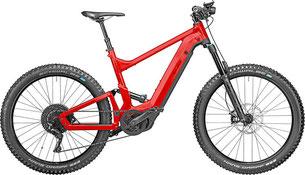 Riese & Müller Delite mountain - e-mountainbike 2020