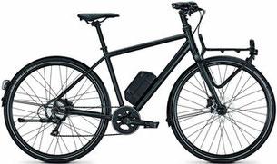 Raleigh Austin - Lasten e-Bike 2018
