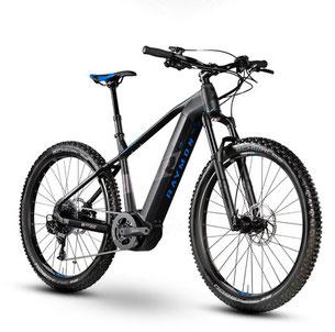 R Raymon E-Sevenray Hardtail - e-Mountainbike - 2019