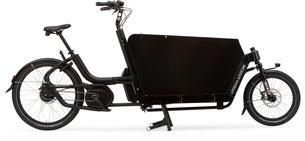 Urban Arrow Cargo - Lasten e-Bike 2019