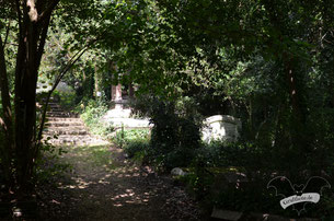 Highgate Cemetery in London, 7. August 2029 / Foto: Batty Blue