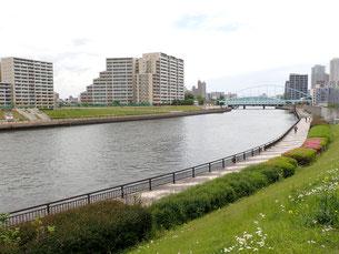 墨田川 荒川区 散歩 菜ちゃんのページ