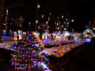 An Avenue of Holiday Lights at LaSalette Shrine