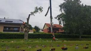 Bilder: Gemeinde Oberthal