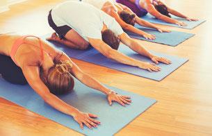 Übungen für ein gesundes Organsystem