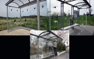 Aufprallschutz für Vögel Foto:K-H Kuhn