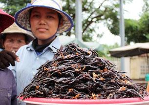 Plat de mygales à Kampong Cham