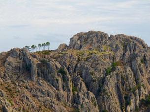 sieben Bäume dekorierten diesen Felsen sehr eindrucksvoll