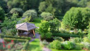 """Jardin """"aux 4 mains"""". (Photo des Propriétaires)"""