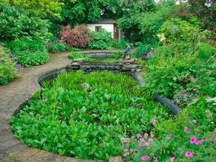 Jardin Clos Clémalluce (Photo du Propriétaire)