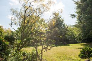 Jardin de Francine et Maurice Riez. (Photo Alain Tessier).