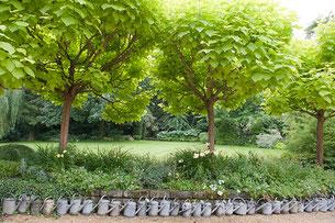 Jardin le Sous Bois. (Photo Alain Tessier)