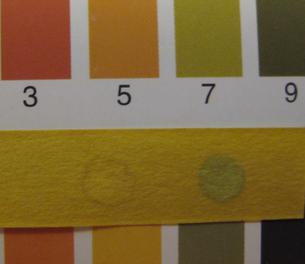 スプレーのpH検査 スポット左=水、右=スプレー痕