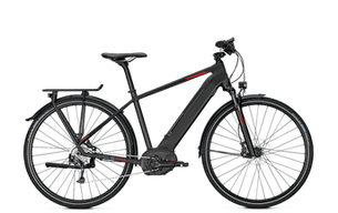 Raleigh Kent - Trekking e-Bike 2018