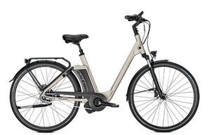 Raleigh Newgate - City e-Bike 2018