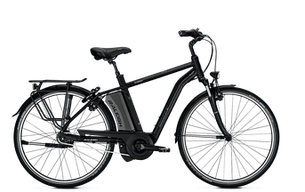 Raleigh Boston - City e-Bike 2018