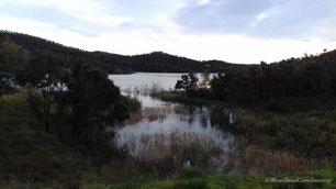 Le barrage de Trapan