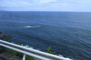 相模湾沿いを箱根方面に向かう