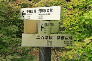 恩賜箱根公園で③