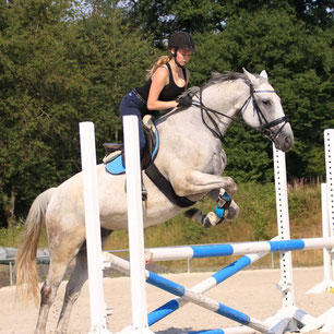 Hunter Jumper and English riding lessons is what we are offering here at Pony Gang in Camden.