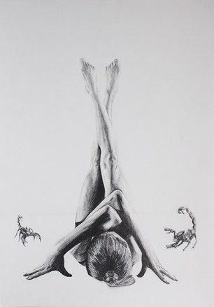 Scorpions / Graphite on paper / 8 1/2 x 14 in