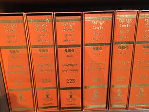Hileige buddhistische Schriften Nyingma Zentrum  Amssterdam Foto Ulrike Filgers