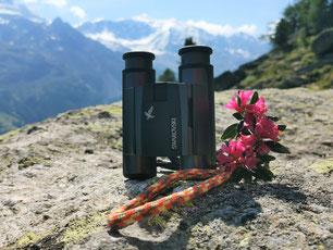 Swarovski CL Pocket Mountain