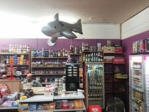 Das erste gefundene Kunstwerk: Der Späti-Fisch!