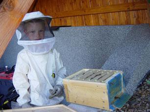 Auch Manuel arbeitet schon an seinen eigens gebauten kleinen Bienenstock!