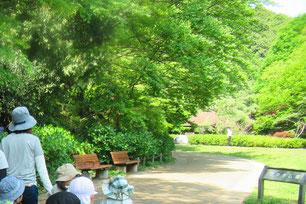 県立 東高根森林公園の中で歩行訓練が出来ます。